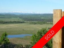 Priddis Add New Value ..RANCH. for sale:  4 bedroom 3,598 sq.ft. (Listed 2013-06-06)