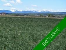 RED DEER LAKE Land for sale:    (Listed 2018-05-10)