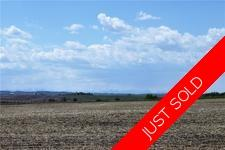 Dewinton ACREAGE for sale:    (Listed 2018-05-30)