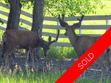 by Priddis  Land for sale:    (Listed 2011-06-13)